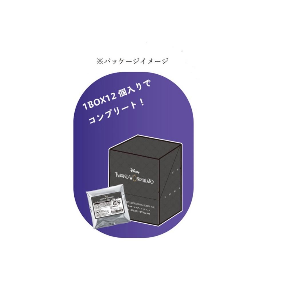 【コンプリートセット】ツイステッドワンダーランド ブラインドアクリルキーホルダーコレクションVol.2(12個)BOX