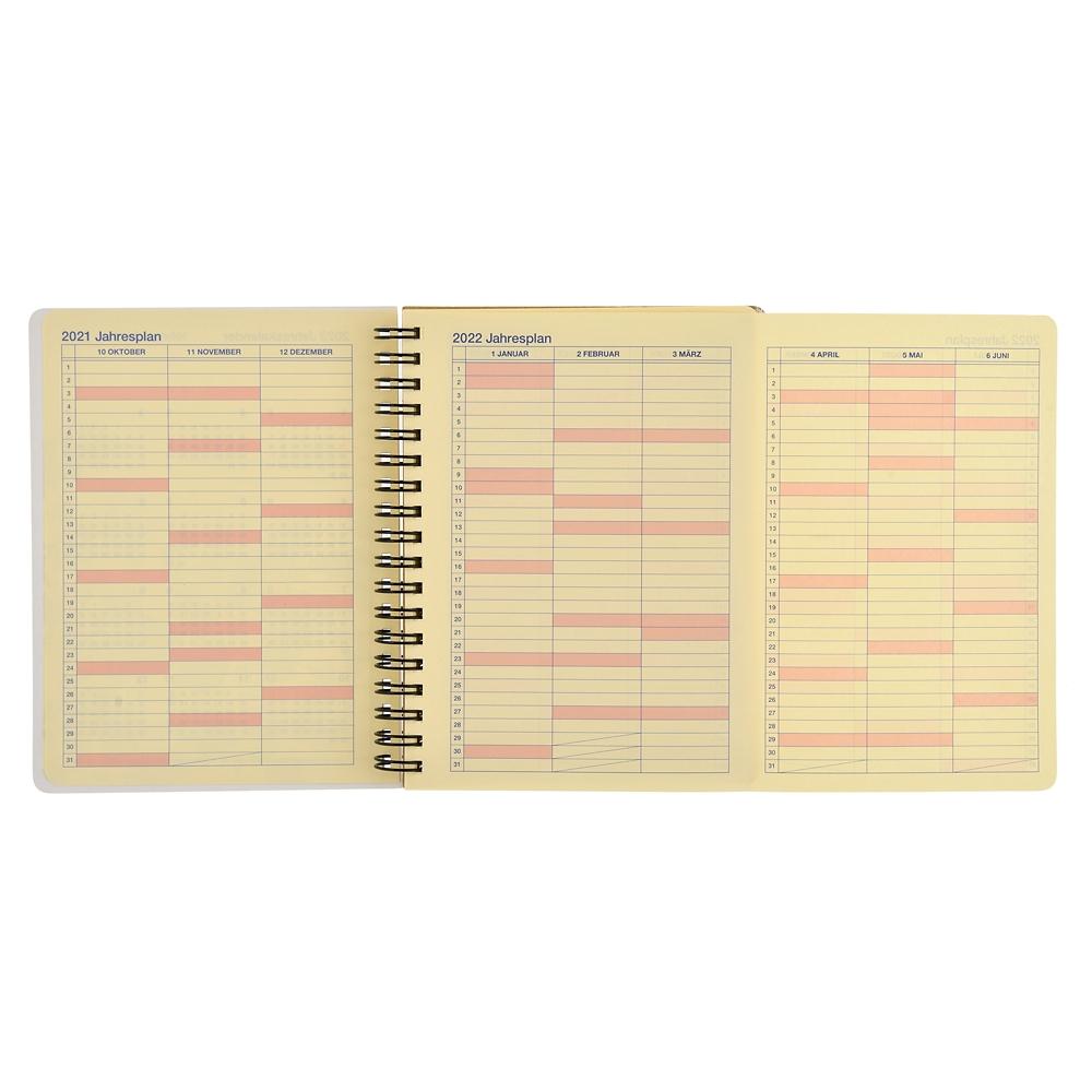【デルフォニックス】ふしぎの国のアリス Rollbahn 手帳・スケジュール帳(L) 2022 CALENDARS & ORGANIZERS