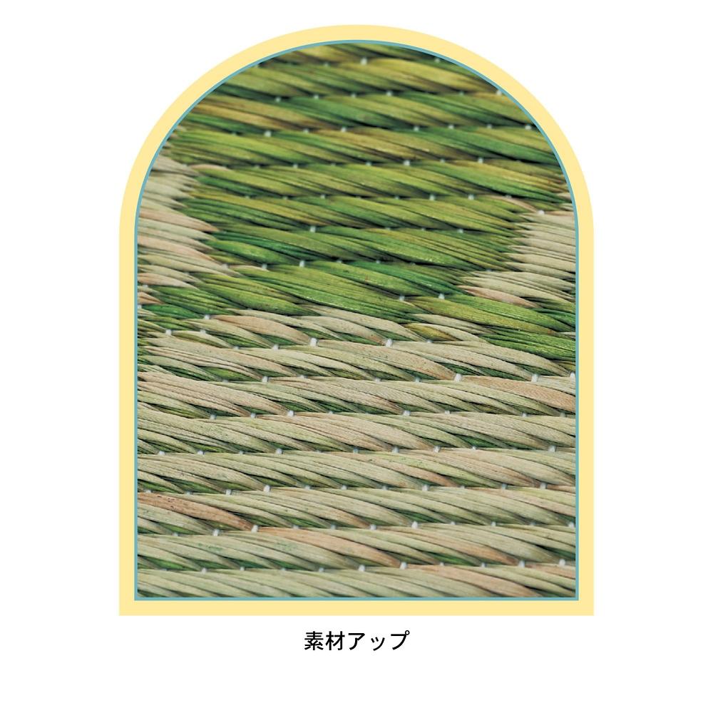 チップ&デール シートクッション2柄セット い草
