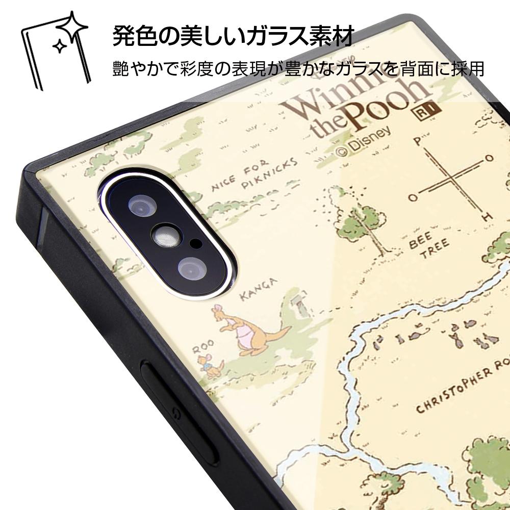 iPhone XS / X /『ディズニーキャラクター』/耐衝撃ガラスケース KAKU/『くまのプーさん』_33【受注生産】