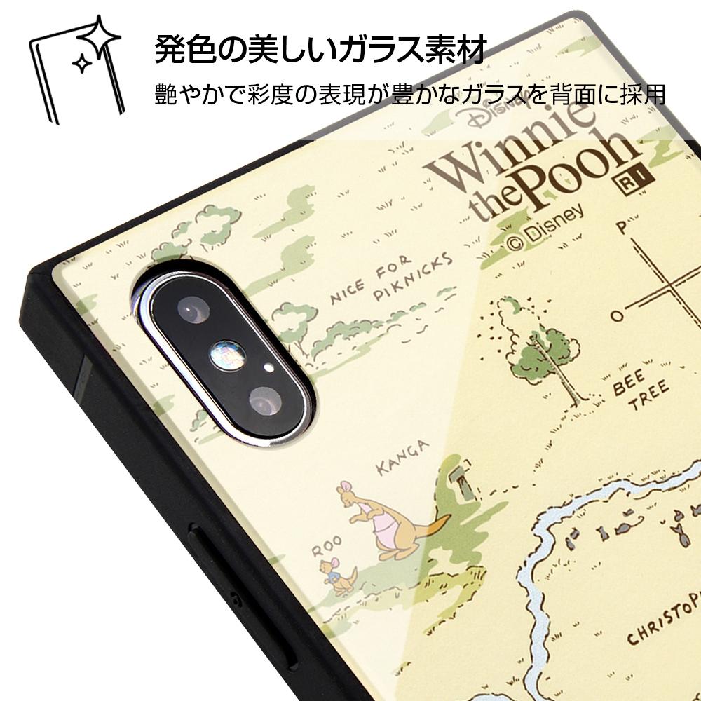 iPhone XS Max /『ディズニーキャラクター』/耐衝撃ガラスケース KAKU/『くまのプーさん』_33【受注生産】