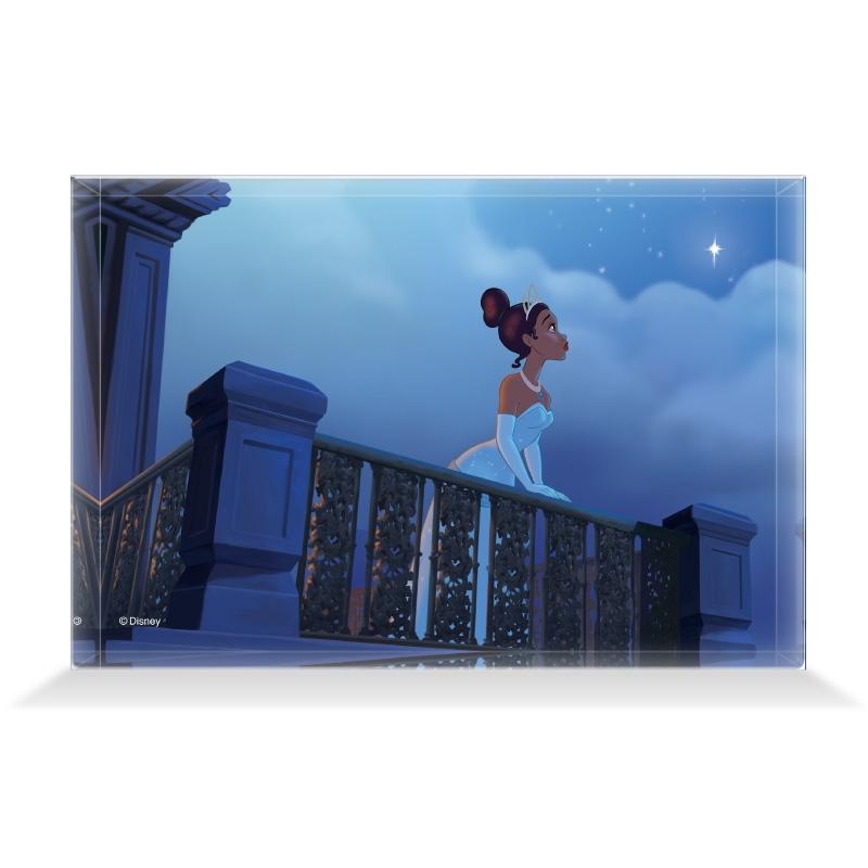 【D-Made】アクリルブロック 映画 『プリンセスと魔法のキス』 ティアナ