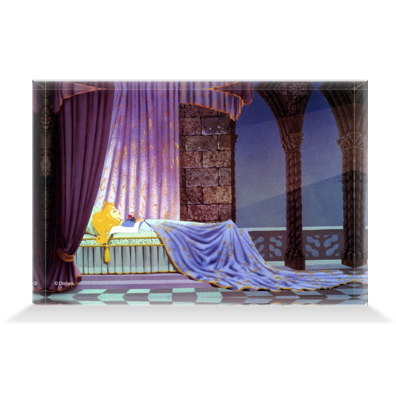 【D-Made】アクリルブロック 映画 『眠れる森の美女』