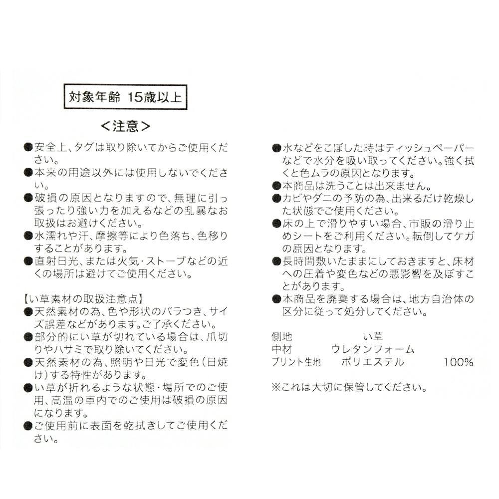 チップ&デール シートクッション い草 Otona Summer 2021