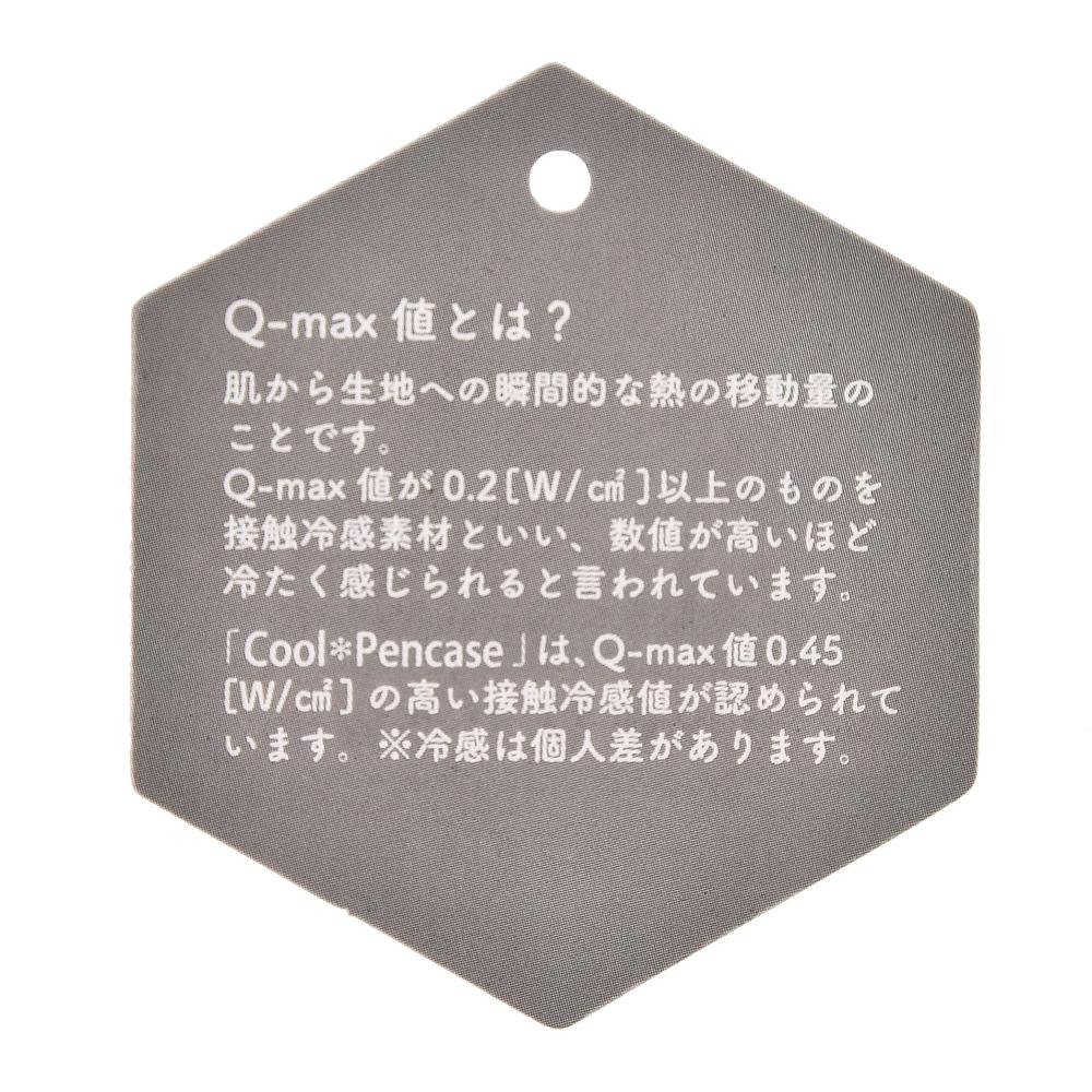チップ&デール 筆箱・ペンケース フラット Cool Stationery