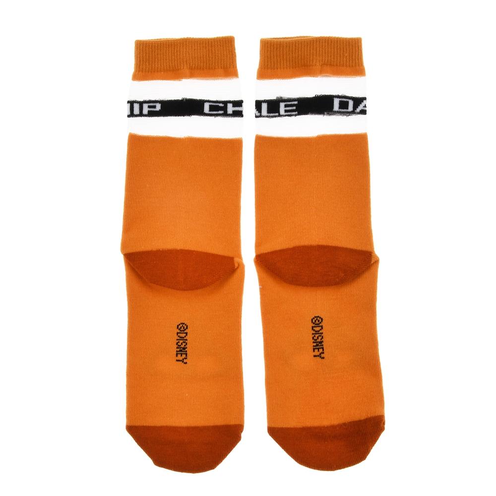 チップ&デール 靴下 シースルー ネームロゴ