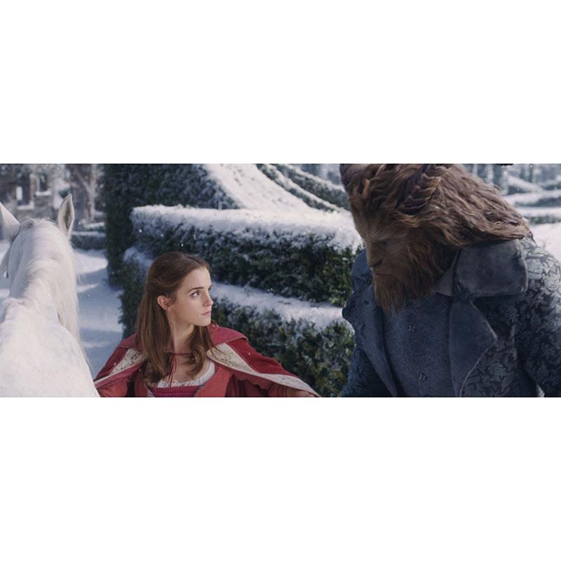 美女と野獣 MovieNEXコレクション
