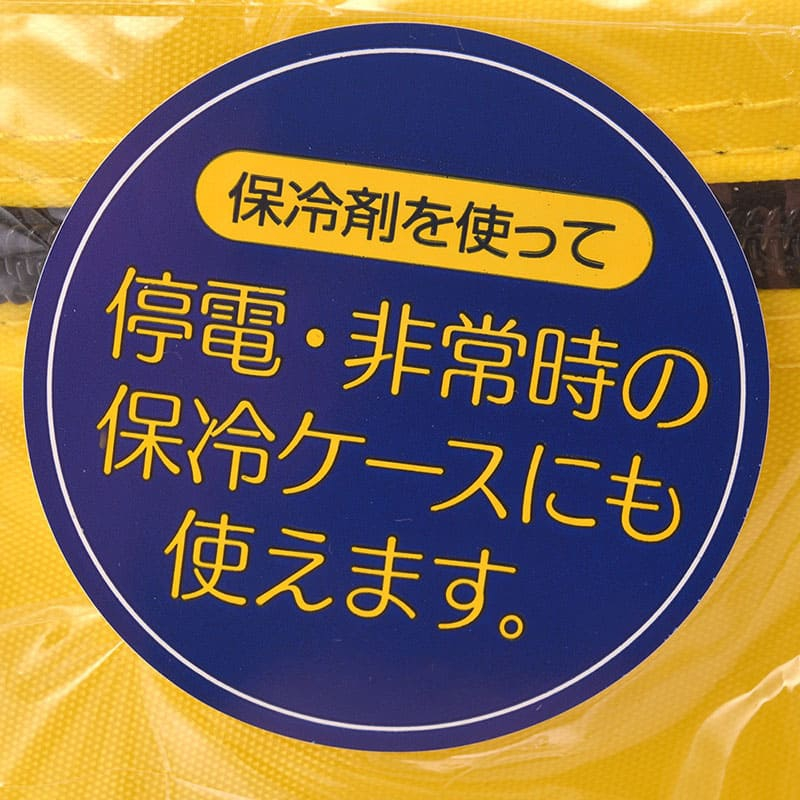 ミッキー 行楽ピクニックケース チアフル 2P