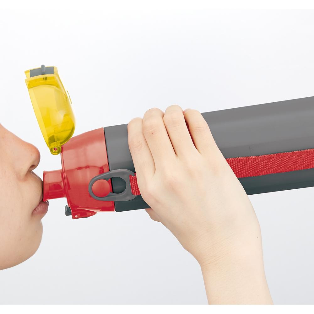 ロック付き ワンプッシュダイレクトステンレスボトル[580ml]●カーズ19●SDC6N