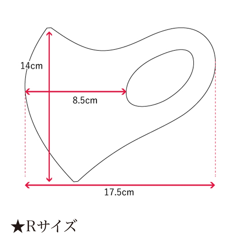 【D-Made】マスク ワンポイント スター・ウォーズ イウォーク
