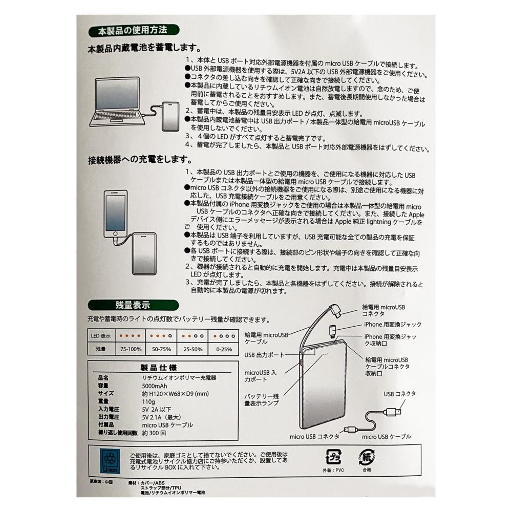 ノスタルジカ ディズニーキャラクター モバイルバッテリー P2
